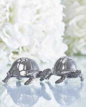 Sköldpaddor salt/pepparkar tenn 1