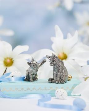 Katter salt/pepparkar tenn 4