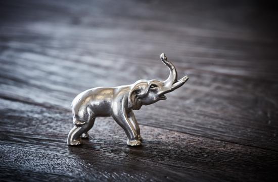 2018-02-23 tenn di038-1 elephant 48 2