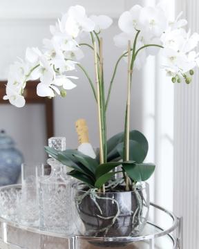 Orkidé kruka 70cm 5