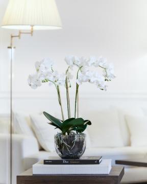 Orkidé kruka 70cm 2