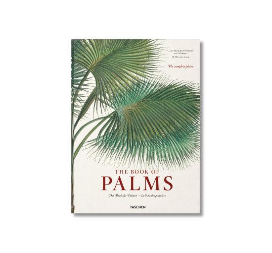 Listbild palms