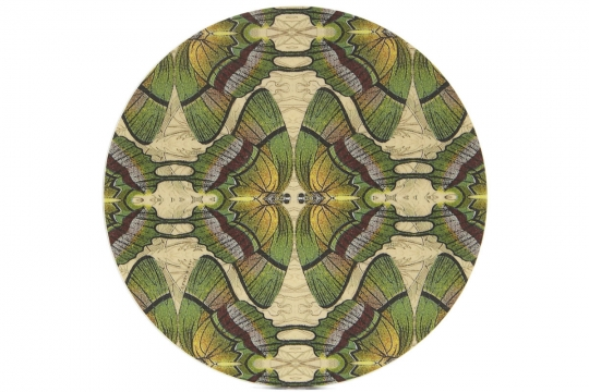 Wildlife Butterfly Coaster 1