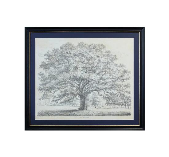 Listbild oak