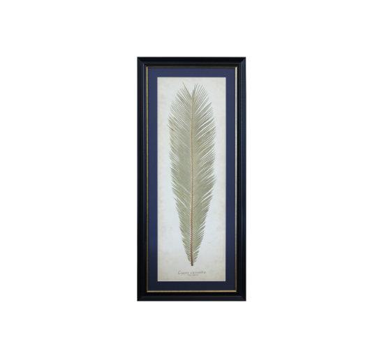 Listbild palm