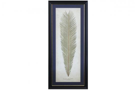 Tavla Sago Palm 1