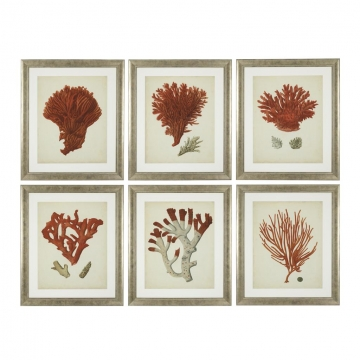 Tavlor Antique Red Corals set of 6 1