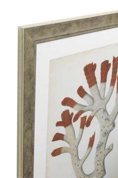 Tavlor Antique Red Corals set of 6 2