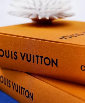 Louis Vuitton Catwalk 3
