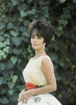 Dior Glamour: 1952-1962 6