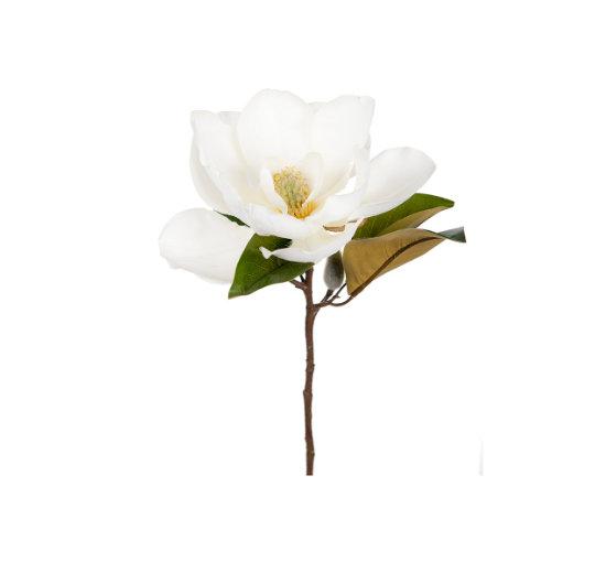 Listbild magnolia