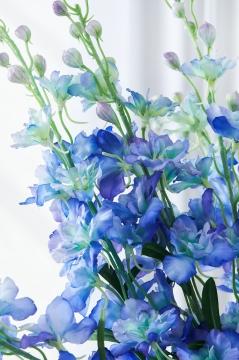 Delphinium snittblomma blå 90cm 2