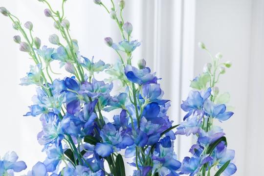 Delphinium snittblomma blå 90cm 5
