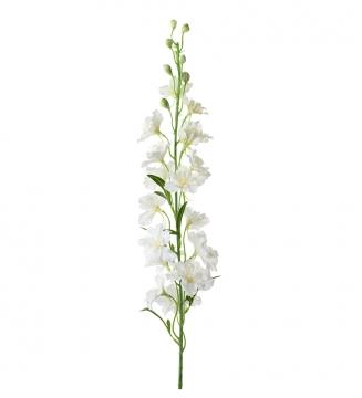 Delphinium snittblomma vit 90cm 4