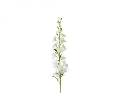 Delphinium snittblomma vit 90cm 3