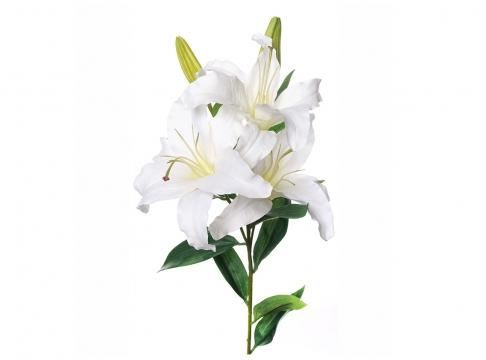 Lilja snittblomma 95cm 2