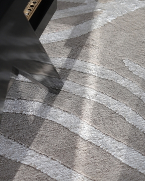 Zebra matta greige/lin 200x300 4
