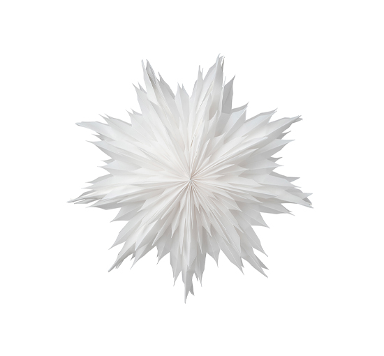 Oslo julstjärna vit 60cm