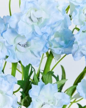 Delphinium snittblomma blå 130cm 2