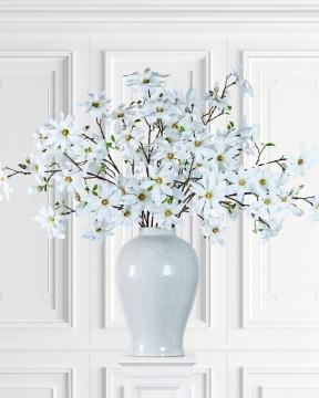 Magnolia snittblomma vit 155cm 1