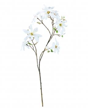 Magnolia snittblomma vit 155cm 3