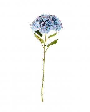 Hortensia snittblomma blå 110cm 3