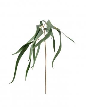 Eucalyptus konstväxt 70cm 1