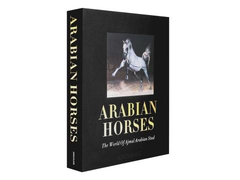 Arabian Horses 1