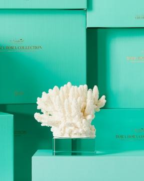 Inès korall vit 4