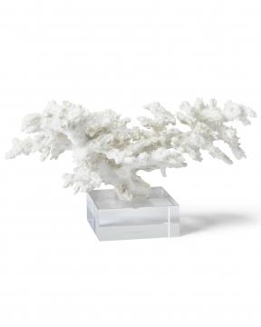 Adèle korall vit 3
