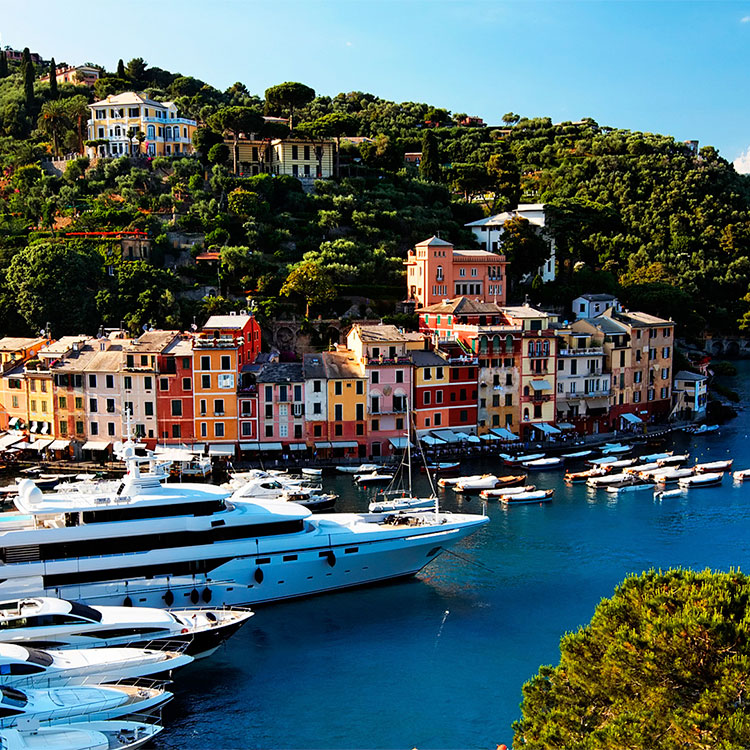 Portofino Collection | Newport