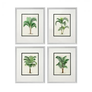 Tavla Palms Set 4 1