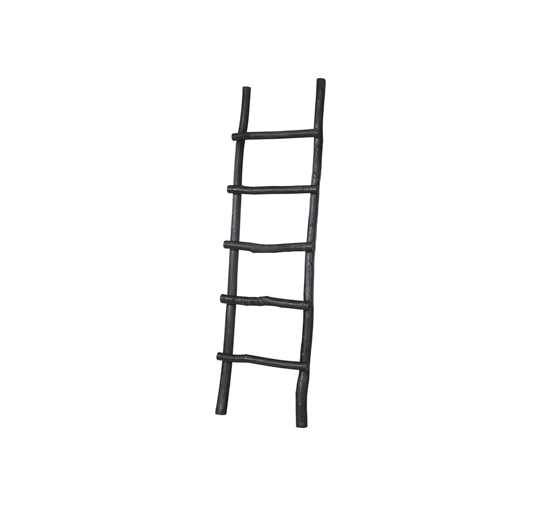 Ladder black 1