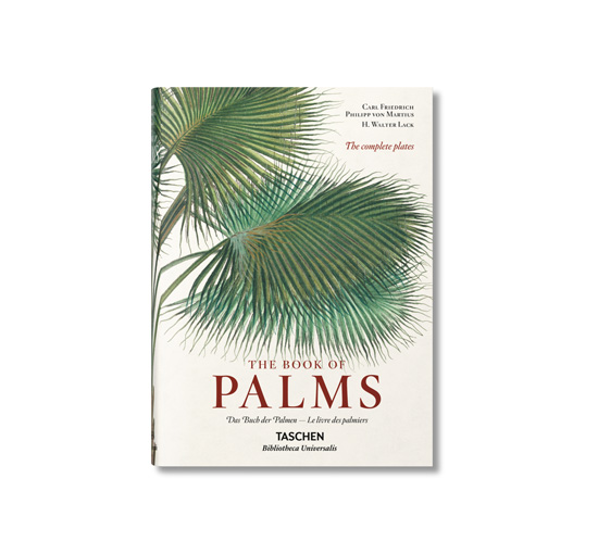 The book of palms 1