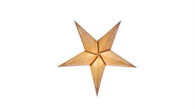 Newport sinatra 56cm gold smooth