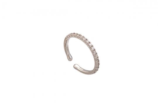 Kennedy ring crystal 1