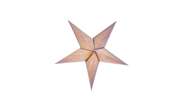 Newport sinatra 56cm silver glitter perf