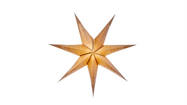 Newport sinatra 76cm gold smooth