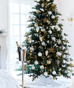 Newport Christmas Tree 2
