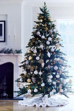 Newport Christmas Tree 1