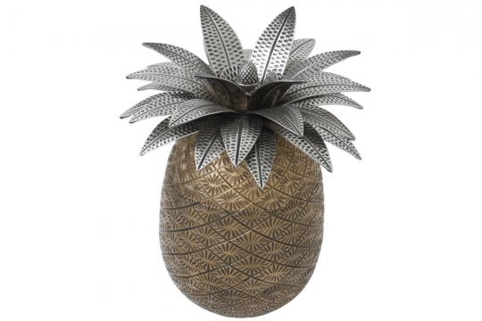 Ask Pineapple 1